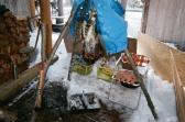 休日の野外料理WSのために鹿肉をさばいて準備