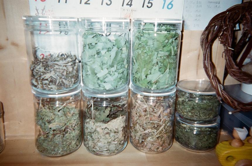 高橋さんが園に着いたら用意する野草茶たち