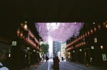 東京で好きな場所の日本橋の横丁